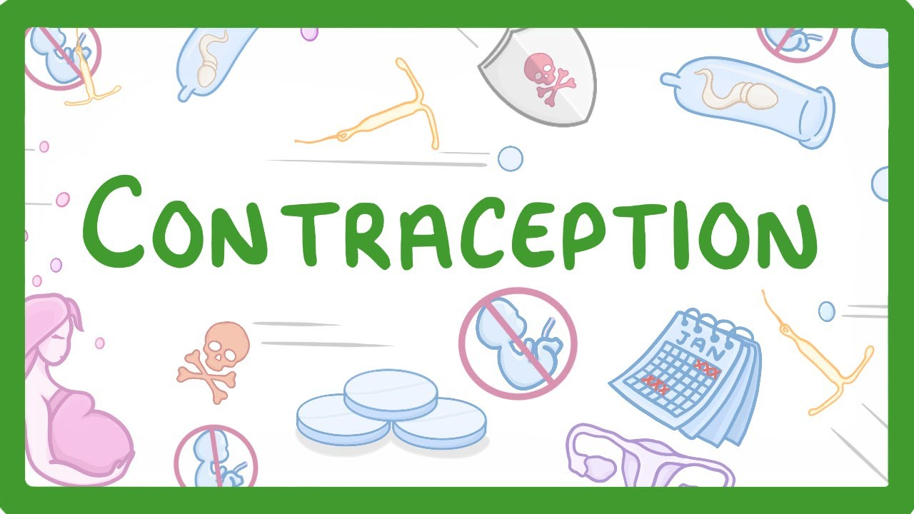 8 Contraception Myths Busted for You - Checkout Now